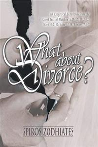 Download What About Divorce fb2